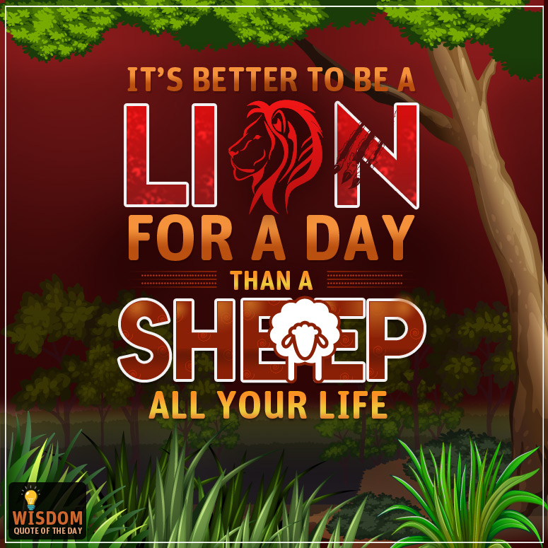 It's better to be a lion for a day