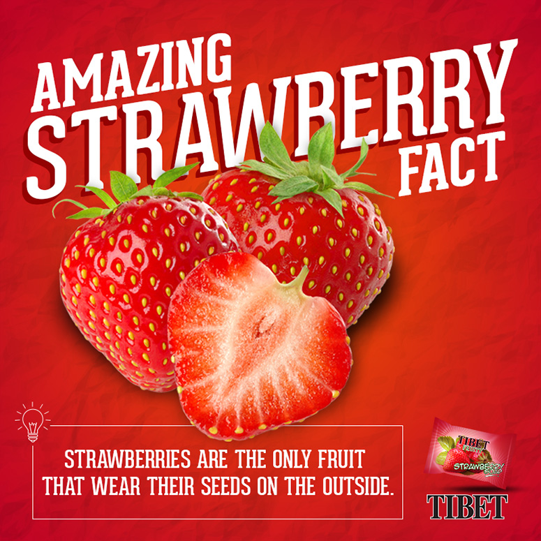 Strawberry Fact