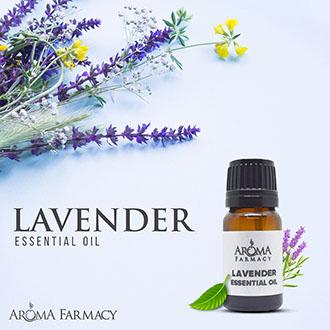 Lavender – Essential Oil