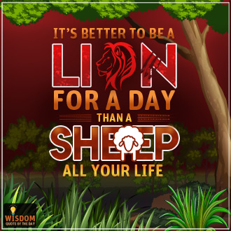 Lion For A Day