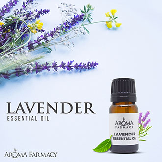Lavender – Essential Oil
